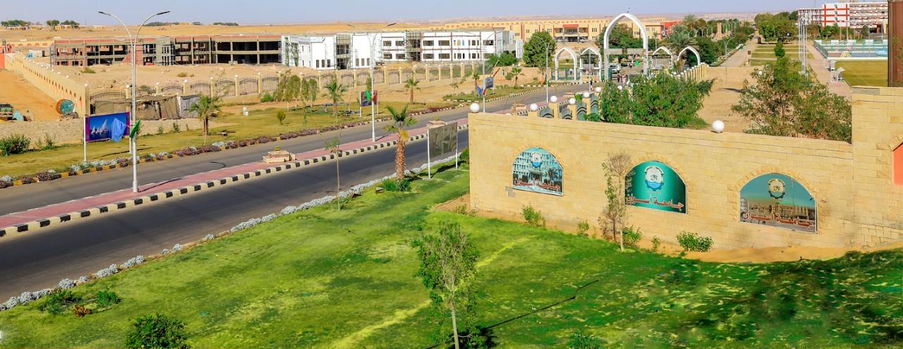 Aswan University's Entrance